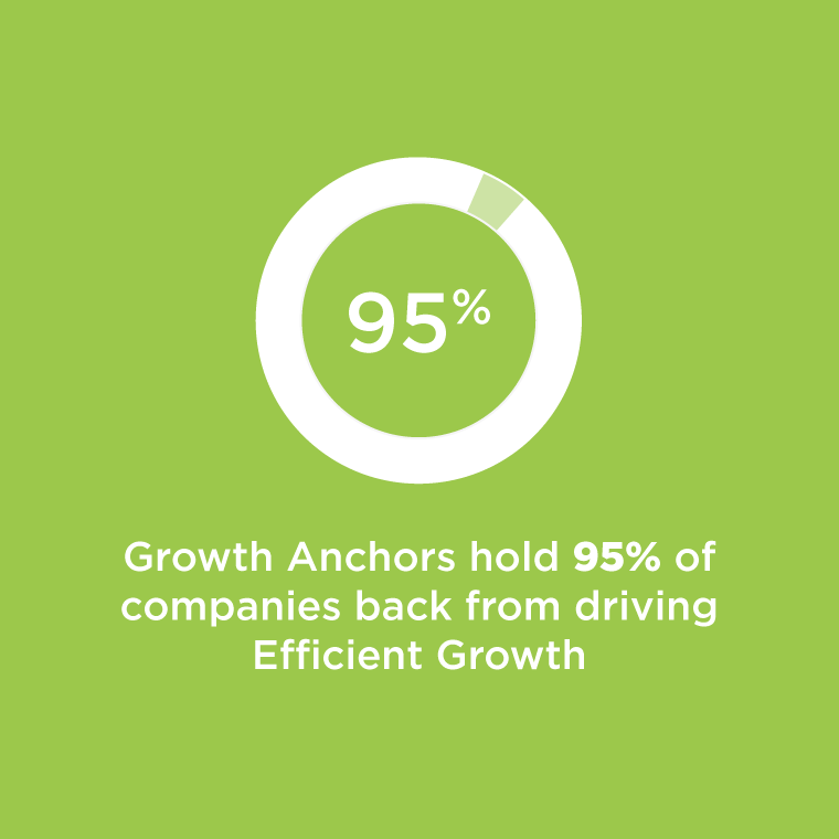 Growth Anchors hold 95% of companies back from driving business growth