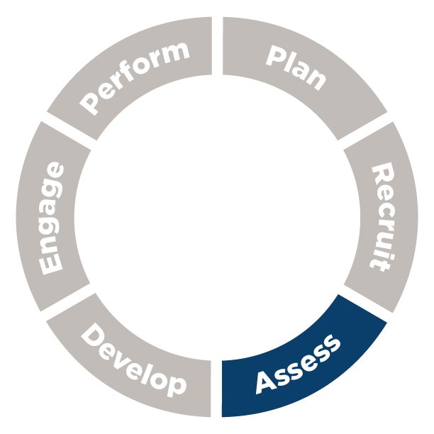 Talent Management Cycle: Assess