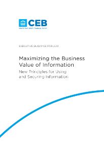 Maximizing the Business Value of Information