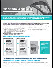 thumbnail of leadership solution flyer