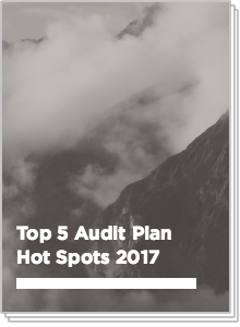 Top 5 Audit Plan Hot Spots 2017
